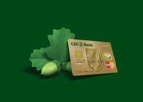 Poza Ce trebuie sa stiu daca vreau un credit de la CEC Bank. Conditii generale de acordare a creditelor